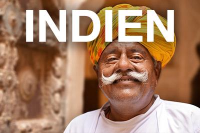 Beitragsbild_Indien_Violo
