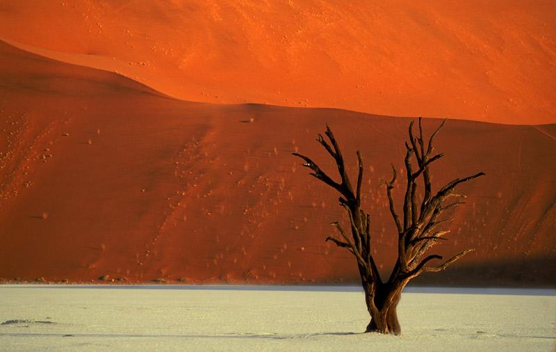 Namibia_Focuswelten