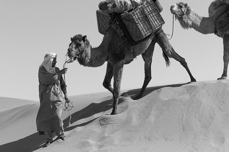 Karl Lueger Marokko