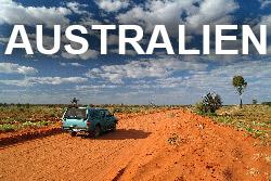 Zwerger-Schoner---Australien