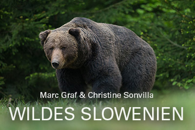 Wildes-Slowenien-Marc-und-Christine